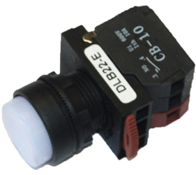 Switches and Lamps - Switches - DLB22-E11WI