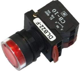 Switches and Lamps - Switches - DLB22-F11RI