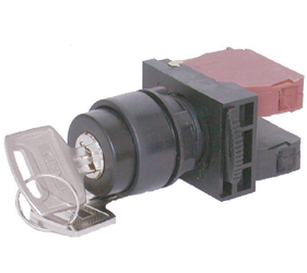 Switches and Lamps - Switches - DSS22-K211