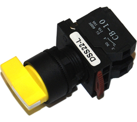 Switches and Lamps - Switches - DSS22-L111Y